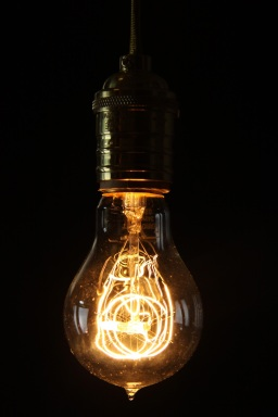 thomas-edison-light-bulb-empirical-style-vintage-interiors-design-image
